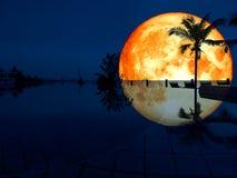 супер бассейн кокоса отражения луны полной крови Стоковые Фото