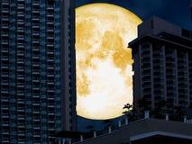 супер башня задней части полнолуния в городе ночи иллюстрация штока