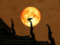 супер задняя часть луны полной крови птицы силуэта на крыше виска Стоковые Фотографии RF