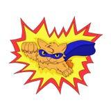 Супер кот Стоковая Фотография RF