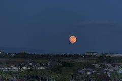 Супер луна поднимая 12-ого августа 2014 над Гонолулу, Гаваи Стоковая Фотография