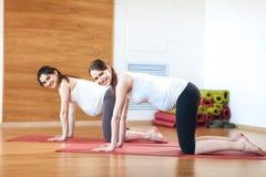 супоросая йога Пренатальная тренировка красивейшая выполняя йога беременной женщины Спокойствие и утеха на пренатальных тренировк стоковые фото