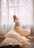 супоросая милая женщина Стоковое Изображение