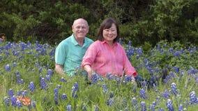 Супруг и жена наслаждаясь bluebonnets в Ennis, Техасе стоковая фотография rf