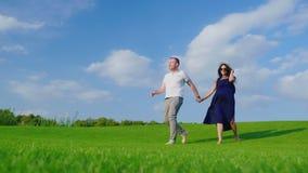 Супруг с его беременной женой идет вдоль зеленого луга, держа руки акции видеоматериалы