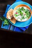 Суп азербаиджанца/русских холодный с зелеными цветами на темной деревенской предпосылке стоковая фотография