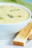 Суп брокколи и чеддера стоковое фото rf
