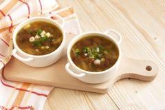 Суп вегетарианца фасолей Стоковые Изображения