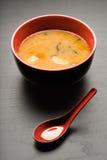 суп вкусный Стоковое Изображение