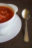 Суп в белой плите с испеченным tortilla Стоковая Фотография