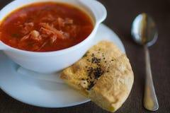 Суп в белой плите с испеченным tortilla Стоковое фото RF