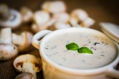 Суп гриба в белом шаре Стоковые Фотографии RF