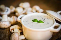 Суп гриба в белом шаре Стоковые Изображения RF