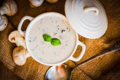 Суп гриба в белом шаре Стоковые Фото