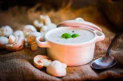Суп гриба в белом шаре Стоковое фото RF