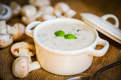 Суп гриба в белом шаре Стоковая Фотография RF