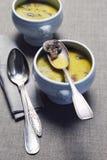 Суп гриба в керамическом tureen Стоковая Фотография RF