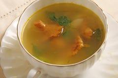 Суп гриба лисички Стоковая Фотография