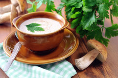 Суп гриба плюшки Пенни с чашкой и ложкой и пуком петрушки Стоковая Фотография RF