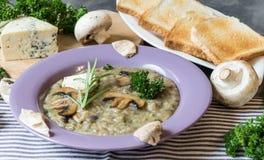 Суп гриба с голубым сыром и свежей петрушкой Стоковое фото RF
