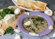 Суп гриба с голубым сыром и свежей петрушкой Стоковое Фото
