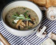 Суп гриба с голубым сыром и свежей петрушкой Стоковая Фотография RF