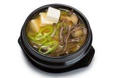 Суп гриба с овощами, говядиной и тофу Стоковое Изображение