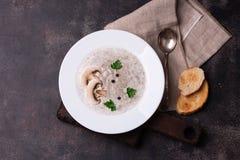 Суп гриба с петрушкой и грибками Стоковое Изображение