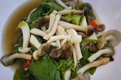 Суп гриба с петрушкой и грибками Стоковые Фотографии RF