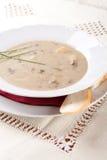 Суп гриба с сливк и картошками стоковые изображения