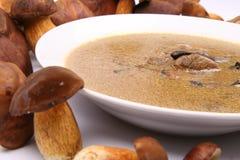 суп гриба Стоковые Фотографии RF