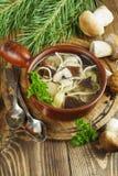 суп гриба Стоковые Изображения RF
