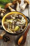 суп гриба Стоковая Фотография RF