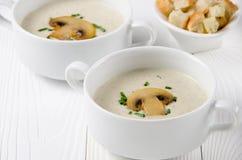 Суп гриба cream в шарах с гренками Стоковое Изображение RF