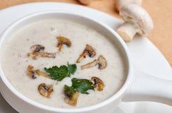 Суп гриба cream изолированный на белизне Стоковая Фотография RF