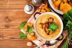 Суп гриба cream с лисичками и петрушкой на деревянной предпосылке Стоковая Фотография RF