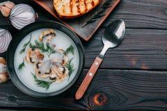 Суп гриба cream украшенный с отрезанными champignons и зеленым цветом стоковое фото rf