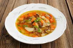 Суп гриба Porcini с картошкой и морковью в белой плите на w Стоковое фото RF