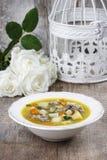 Суп гусыни стоковые изображения