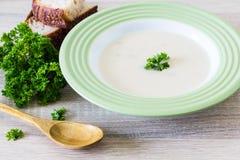 Суп и петрушка стоковые изображения rf