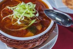 Суп капусты в шутихах плиты лозы Стоковые Фотографии RF