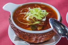 Суп капусты в шутихах плиты лозы Стоковое Изображение RF