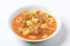Суп капусты Стоковые Фотографии RF