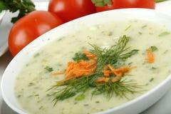 суп картошки утечки Стоковые Фотографии RF