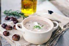 Суп каштана осени сметанообразный Стоковое Фото