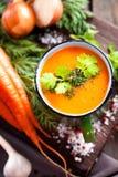 Суп овощей стоковые изображения