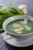 Суп одичалого чеснока с пармезаном стоковые фотографии rf