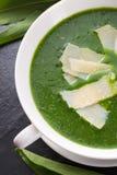 Суп одичалого чеснока с пармезаном стоковое изображение rf