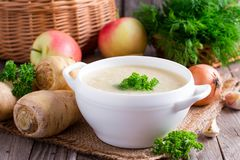 Суп пастернака с петрушкой и овощами Стоковые Фотографии RF