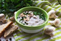 Суп пюра гриба с allspice, петрушкой, champignons и toas Стоковая Фотография RF